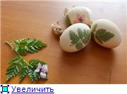 Красим пасхальные яйца 203ced34a09dt