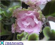 Красота без границ - Страница 2 84f10ded7f48t