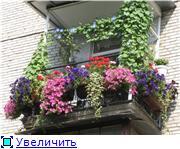 Балконная Идиллия или Драйв E4fc7a63f8bbt