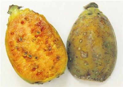 Экзотические фрукты и с чем их едят 590d2b3d4439