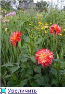 Лето в наших садах - Страница 7 A72cc013e6cet