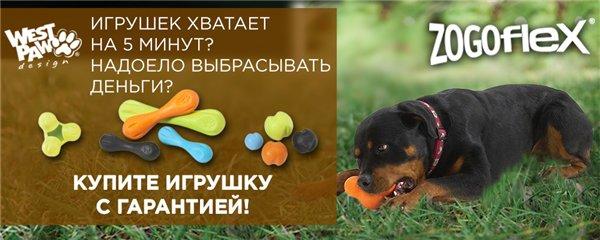 Интернет-магазин Red Dog- только качественные товары для собак! - Страница 3 9cc6e6785be5