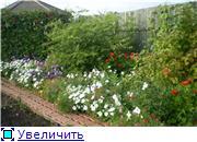 Лето в наших садах - Страница 3 861e16ec2106t