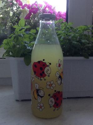 Домашний лимонад 5de449487255