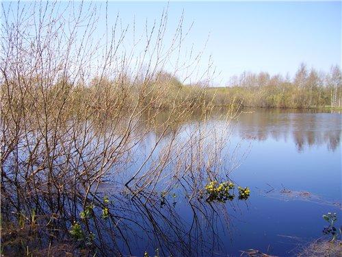 Весна, лето, осень - природа 1c39d6f8915a
