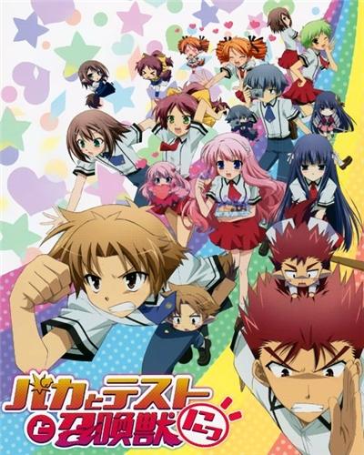 Дурни, Тесты, Аватары / Baka to Test to Shoukanjuu Ni! / バカとテストと召喚獣にっ!(2011 г. 13 серий) 0ac5a774cf07