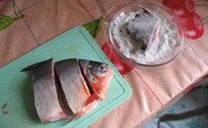 Южно-американскую пиранью выловил и съел рыбак в Кузбассе D77938ea440f