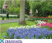 Живописные пейзажи / Paysages pittoresques 0ebc19a36a57t