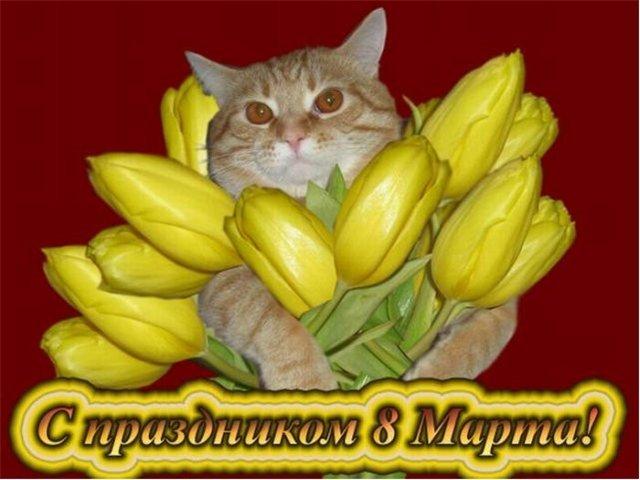 Мартовские поздравления - Страница 3 5d63049ebd6d