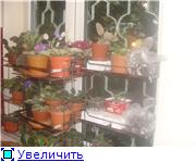 Дополнительное место для растений. 53938ab6673at
