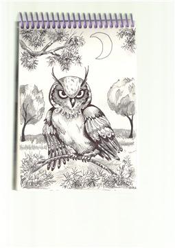 Рисунки ручкой 25b1301273b1t