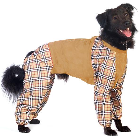 Интернет-магазин Red Dog- только качественные товары для собак! - Страница 7 F8e572cd656b