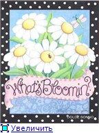 Цветы, букеты 9a47c452e7cbt
