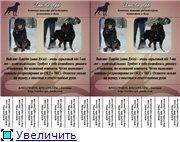 Социальная реклама 31777063aa7et