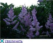 Лето в наших садах - Страница 3 280d9f09bd96t