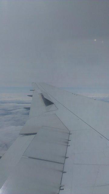 Механизация крыла Боинг-767 A099dedcfb5d