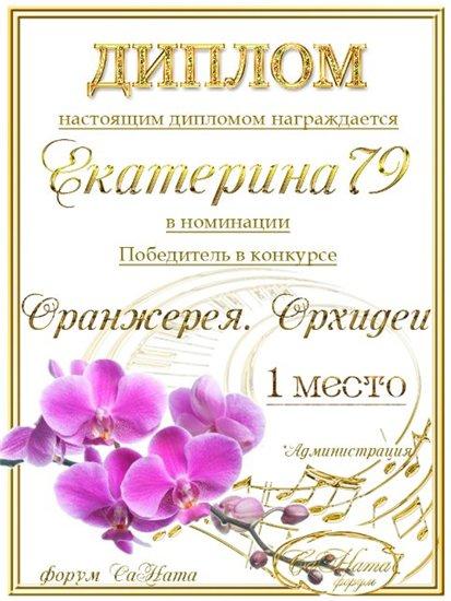 """Поздравляем победителей конкурса """"Оранжерея. Орхидеи""""! 58c31f3a28d8t"""