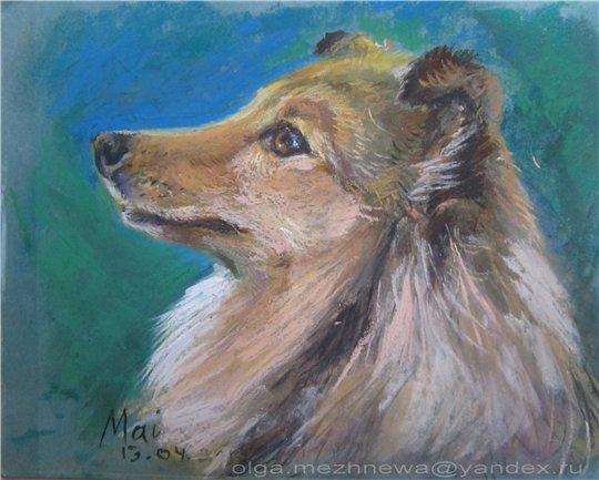 Рисую собак по фото - Страница 6 8f3113c281d0