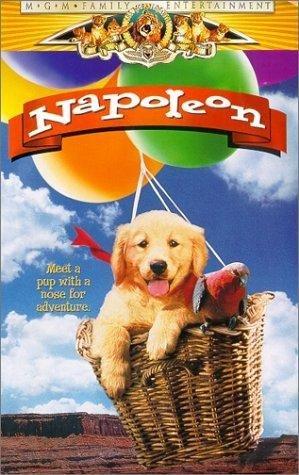 Наполеон (1995) Ea0767c871ae