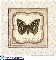 Животные, птицы и насекомые 575aa9c56c2dt