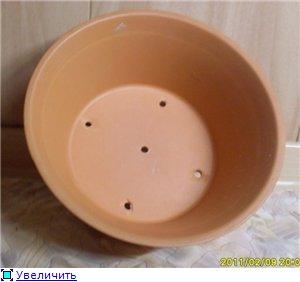 Бонсайницы (посуда для бонсаи) C23191d41270t