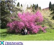Курорт Шмаковка 5bf0669f08aet