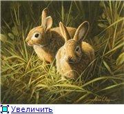 Животные, птицы и насекомые 2e347c0ebcect