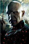 Гарри Поттер и Дары Смерти: Часть первая / Harry Potter and the Deathly Hallows: Part 1 (Уотсон, Гринт, Рэдклифф, 2010) 2f9f09cfee1ct
