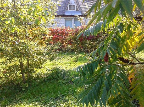 Осень, осень ... как ты хороша...( наше фотонастроение) - Страница 4 77dc964f1443