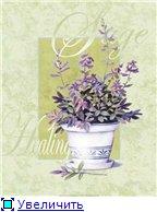 Цветы, букеты A6f0ecae6e70t