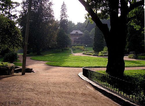 Парк. 458d3bfd49c6