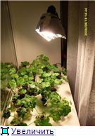 Освещение для растений 3780de47622bt