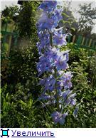 Лето в наших садах - Страница 4 6392114f433bt