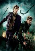 Гарри Поттер и Дары Смерти: Часть первая / Harry Potter and the Deathly Hallows: Part 1 (Уотсон, Гринт, Рэдклифф, 2010) 161b4d9f31a1t