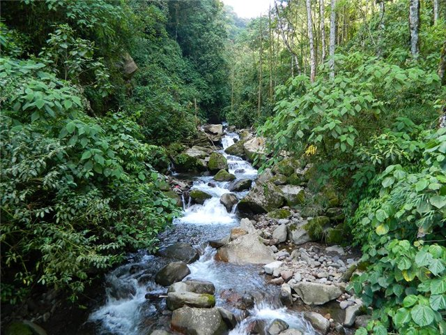 Costa Rica. Центральная Америка. - Страница 17 A19ff20aefbf