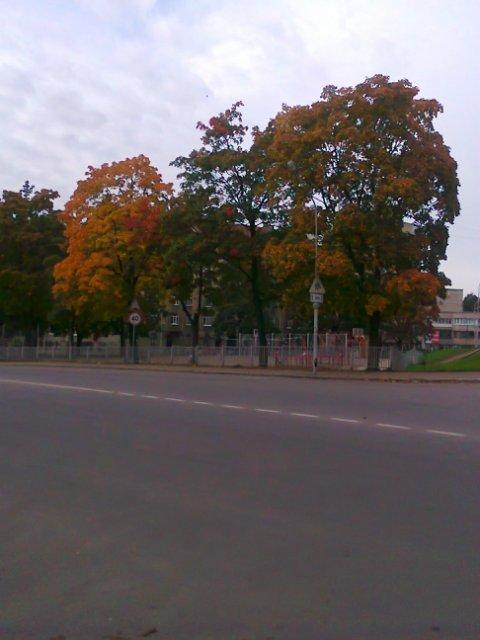 Фото конкурс: Осень в моем городе  F37e21b13383