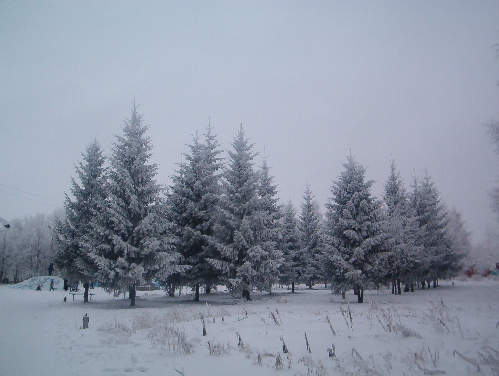 Фото Петра-Дубравы C288d4ba3850