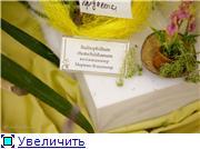 Выставка орхидей в Государственном биологическом музее им. К.А.Тимирязева 6922828181c1t