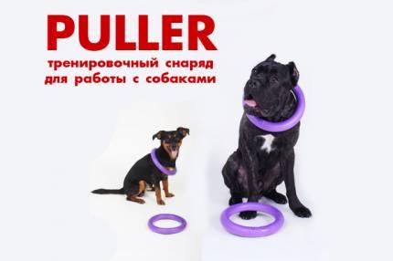 """Интернет магазин товаров для собак """"Волча"""" C5e7c0f05318d242874d1d6595392419"""