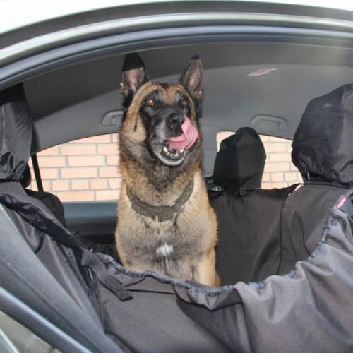 """Интернет магазин товаров для собак """"Волча"""" 05403a774747a3258fe460e925475bea"""