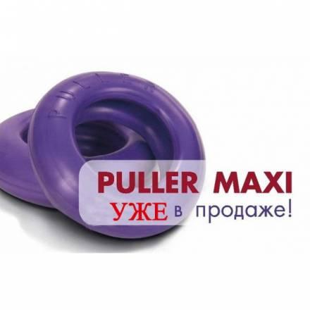 """Интернет магазин товаров для собак """"Волча"""" C9885802a51535022e4db16bb5945709"""