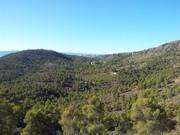 FOTOS DE VARIAS SALIDAS año 2012 20120916_100649