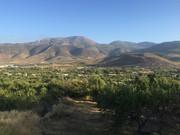 ASNOS VIAJEROS 2015 (Granada/Veleta/Cartagena) IMG_0721