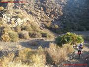 (25/10/2014) De Cabo Palos a Cabo Gata 'Locura Bordillera' Bttcartagena_de_cabo_a_cabo_35