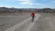 (08/02/2014) Ruta Ciclista Garbancillo de Tallante 20_5