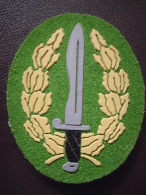 Medallas y más. DSCI0076