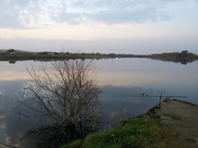 """Рыбалка на пруду """"Черноморец"""". - Страница 5 20150924_061635"""