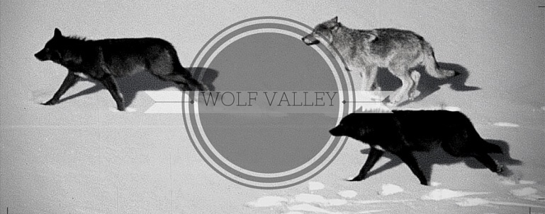 Wolf Valley | Literate, Realistic Wolf RP Image