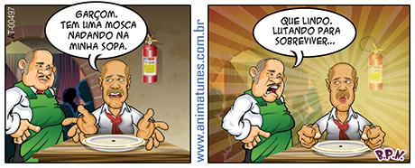 tirinha 497