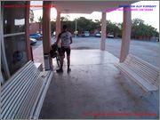 ASNOS VIAJEROS 2015 (Granada/Veleta/Cartagena) D_a_5_guilas_Cartagena_4